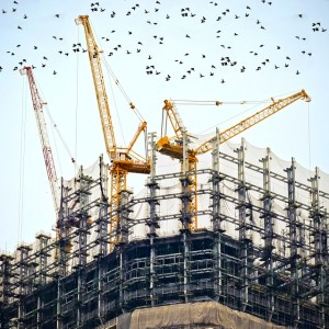 Pre Construction Investment by Foreign Investors