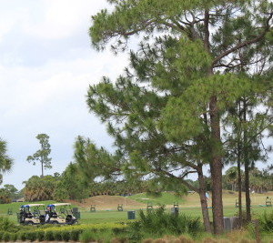 Golfing-in-Port-St-Lucie